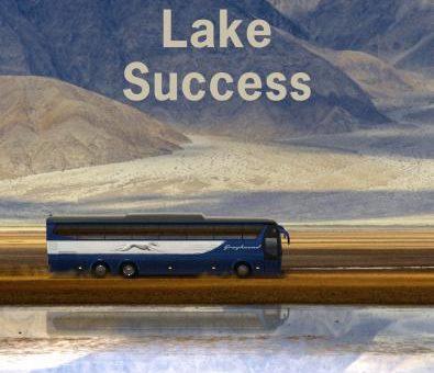 Gary Shteyngart, Lake Success